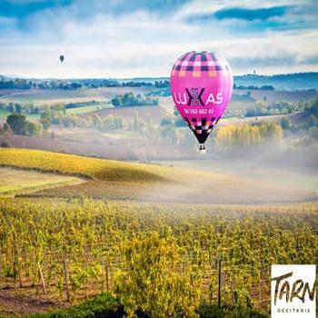 Vol au dessus des vignes @BOUTHE Christophe